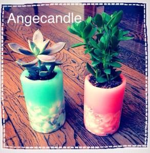 Ange4(トリミング)